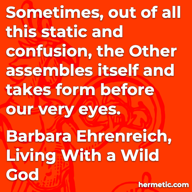 Hermetic quote Ehrenriech Living with a Wild God out of all this static