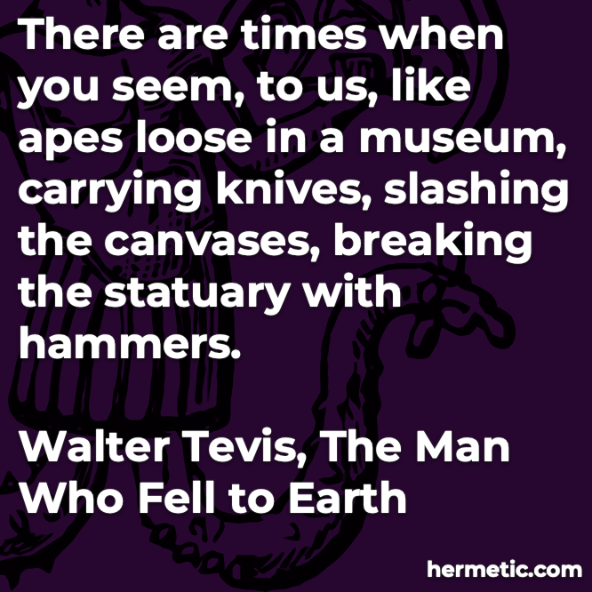 Hermetic quote Tevis The Man Who Fell to Earth apes loose in a museum carrying knives slashing breaking with hammers