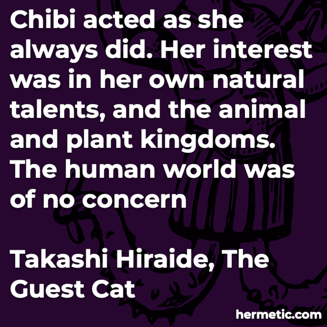Hermetic quote Hiraide The Guest Cat natural talents animal plant human world no concern